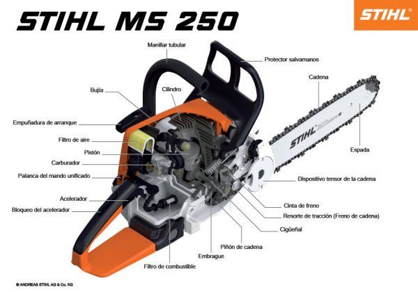 ms 250 2
